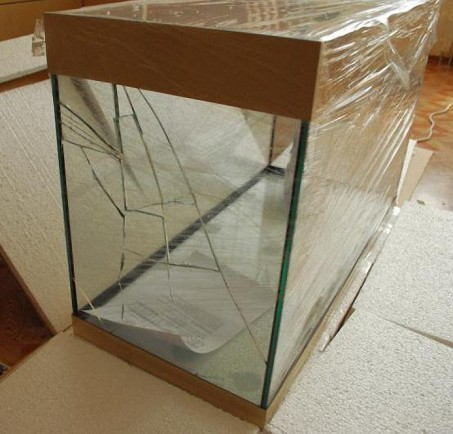 Что делать если стекло аквариума треснуло?
