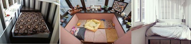 Пеларгония королевская - уход в домашних условиях, фото 58