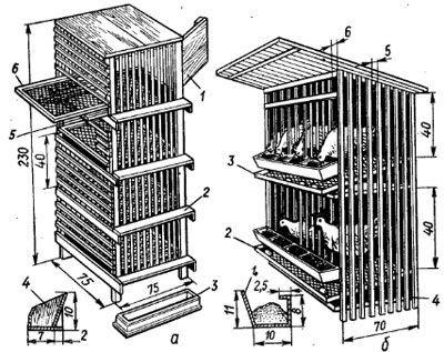 Клетка для бройлеров своими руками чертежи фото