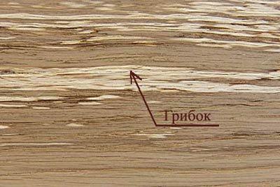 дефекты древесины