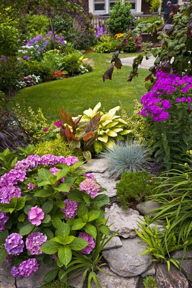 Цветы для палисадника многолетние