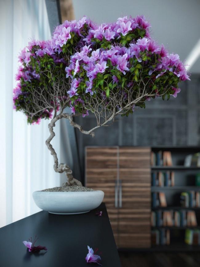 цветы в интерьере, имитация бонсаи