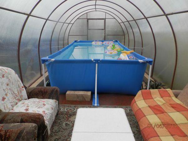 Бассейн на даче в теплице